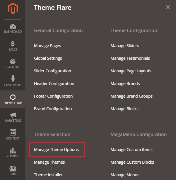 Manage Theme Options